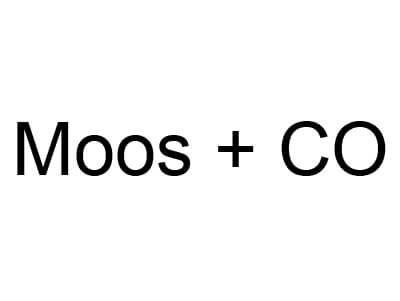 member_moos.jpg